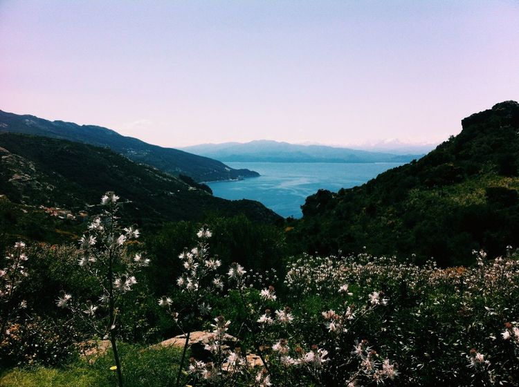 Holiday Landscape Nature Corse S E A S I D E