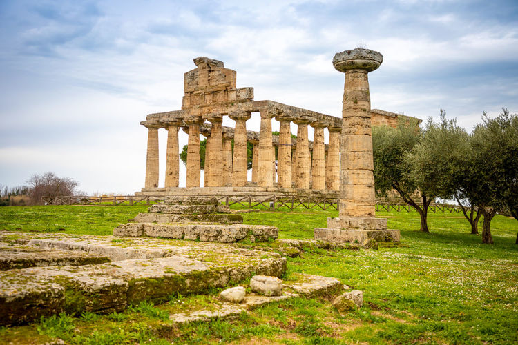 Italy Paestum History Ancient The Past Architecture Old Ruin Ancient Civilization Built Structure Sky Architectural Column Travel Destinations Archaeology Travel Tourism Ruined Nature Old Plant Damaged Grass Tree No People Outdoors Deterioration