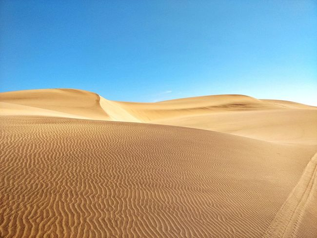 Namibia Landscape Namibia Desert Africa Swakopmund Namib Desert EyeEm Selects Sand Dune Clear Sky Desert Arid Climate Sand Hill Blue Accidents And Disasters Adventure Full Length Extreme Terrain