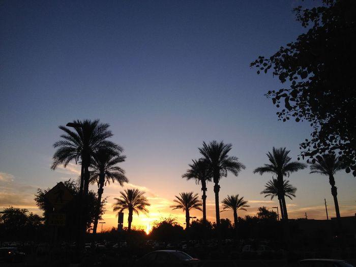 Eye4photography  Sunset Sunrise Sun Sunshine Sun_collection Sunset_collection