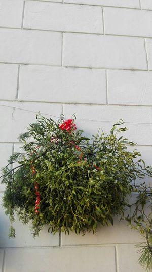 Showcase: December Trentino Alto Adige Mercatino Di Natale Hello World Christmas Decorations