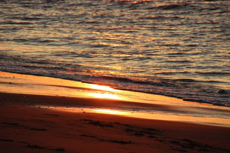 sunset on the beach, goldamber, orange, sparkeling sunlight on wave Calm Chilling Peace Yoga Beach Beauty In Nature Day Horizon Over Water Nature No People Ocean Outdoors Sand Scenics Sea Silence Sky Sunlight Sunset Tranquil Scene Tranquility Water Wave