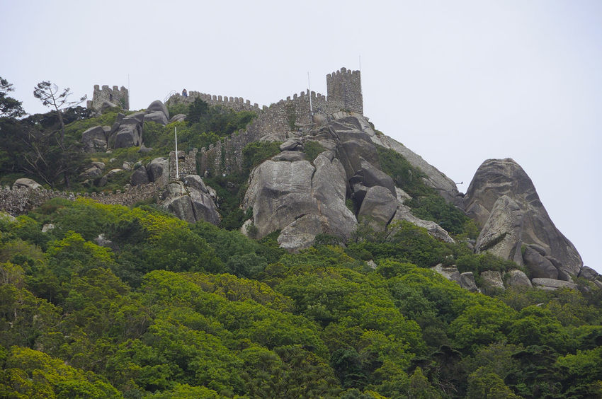 Castle of the Moors in Sintra Castle Of The Moors In Sintra Beauty In Nature Castel Cliff Day Mororsport Mountain Nature No People Outdoors Scenery Sky