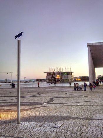 Expo Parque Das Nações