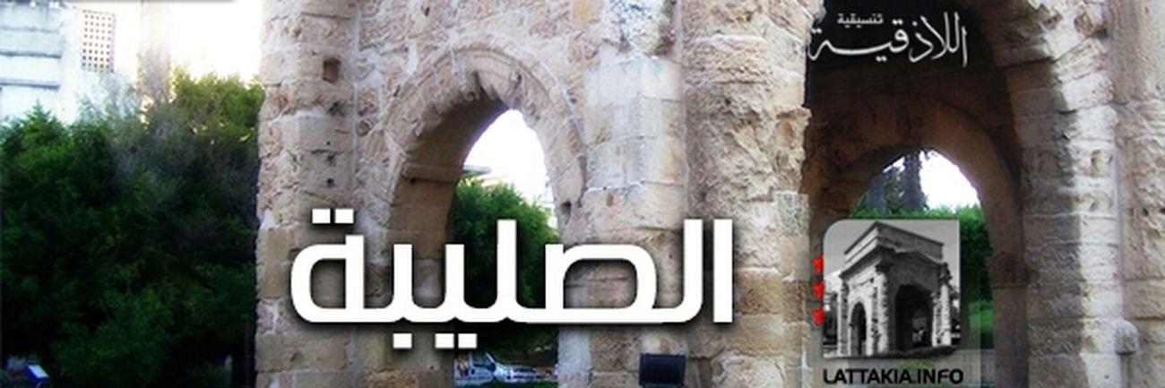 Syria  Latakia  Free Syrian Army Syrian Freedom