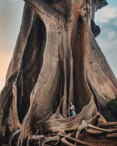 Man standing on tree trunk