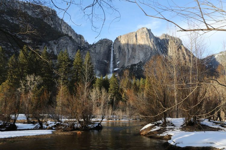 Rocky mountains and trees by merced river