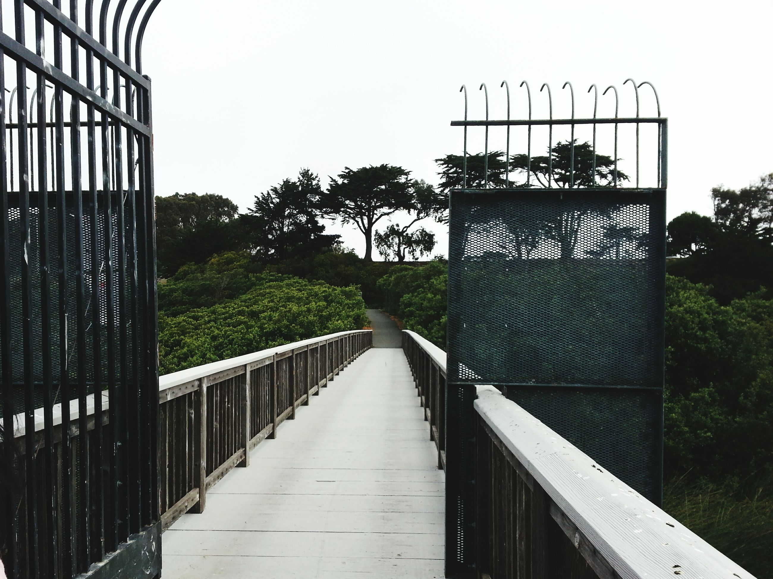 built structure, architecture, railing, building exterior, tree, clear sky, the way forward, gate, steps, footbridge, day, outdoors, staircase, no people, house, wood - material, steps and staircases, metal, sky, fence