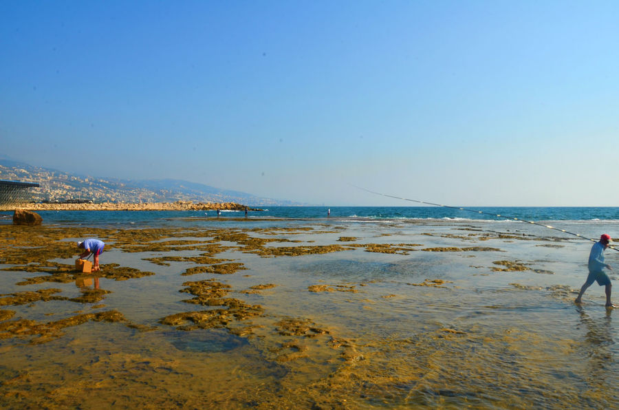 Beauty In Nature Blue Byblos Byblos,Lebanon Coastline Day Enjoyment Fishermen Fishing Horizon Over Water Idyllic Leisure Activity Lifestyles Nature Outdoors Remote Scenics Sea Shore Sky Tranquil Scene Tranquility Vacations Water
