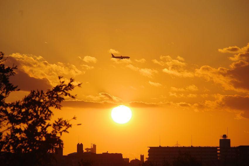 Sunset Flying City 淀川