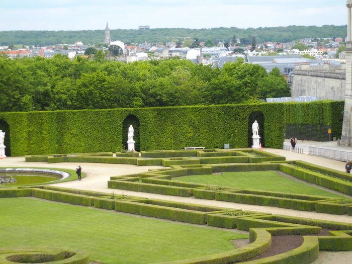 View of garden in park