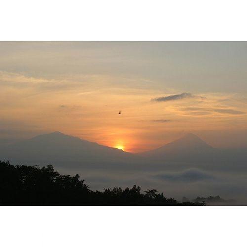 Masa kecilku terselamatkan 😀 ( gambar pemandangan dengan 2 gunung dan matahari di tengah serta burung) 😄😄 Amaturecapture Amateur Sunrise Puthuksetumbu Borobudur Noeffect Noedit Eksploremagelang Eksploreborobudur