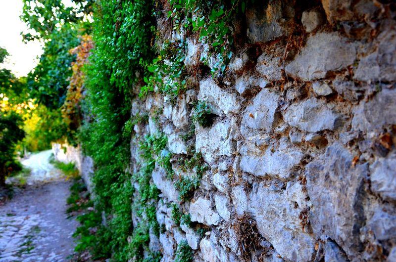 Street's Wall