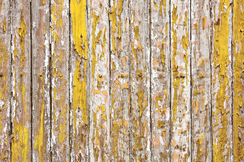 The old wooden wall painted with pale yellow color cracking, peeling and revealed the spike nail and rustic wood texture Paint Panel Wall Wood Aged Backdrop Background Board Cracked Dirty Fence Grunge Lath Old Pale Pattern Peel Peeling Rough Rusty Striped Texture Timber Wallpaper Wooden