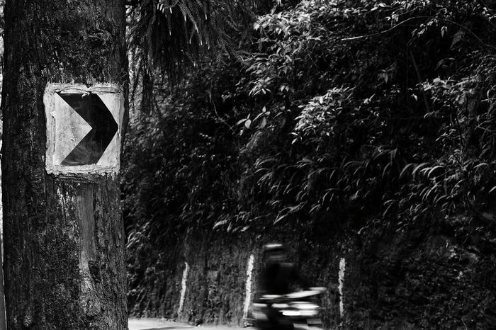 This sign doesn't makes sense Day Road Outdoors Tree Signs Signboard Signal Monochrome Black And White Onelife Art Is Everywhere Sikkimdiaries Gangtok, India Street Photography EyeEmNewHereFast Motion Fast Fast Life TRENDING  AllBlack
