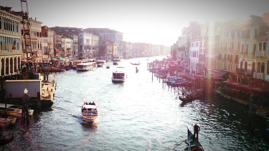 Ponte Di Rialto Venice Canals Venice, Italy Venizia Venise Venice View Colorful City Venice Vaporetto Vaporetto Sunshine
