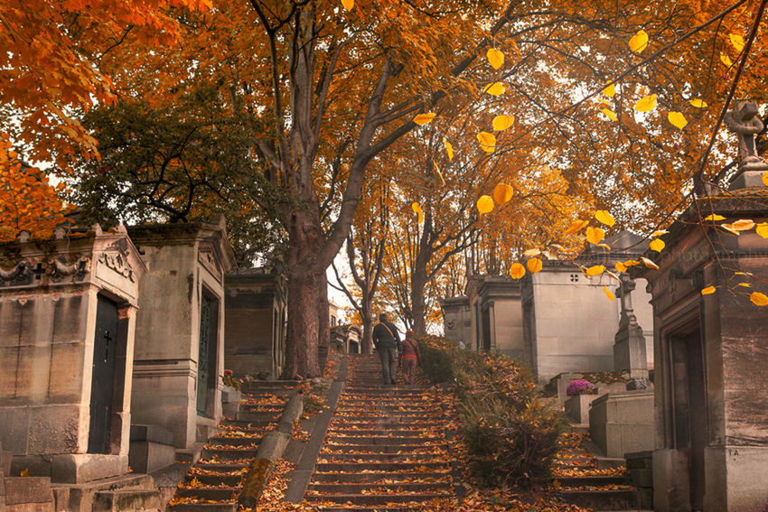 Autumn Autumn Autumnal Leaves Branch Cemetery France Leaves Low Angle View Marji Lang Photography Nature Orange Color Outdoors Paris Paris, France  Parisian Père Lachaise Père Lachaise Cemetery Season  Travel Photography Tree Yellow Feel The Journey