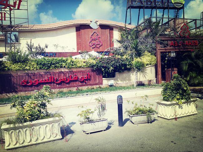 Streetphotography Around Me اسكندرية Hello World