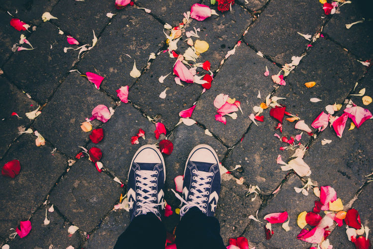 Low section of man standing on street with petals