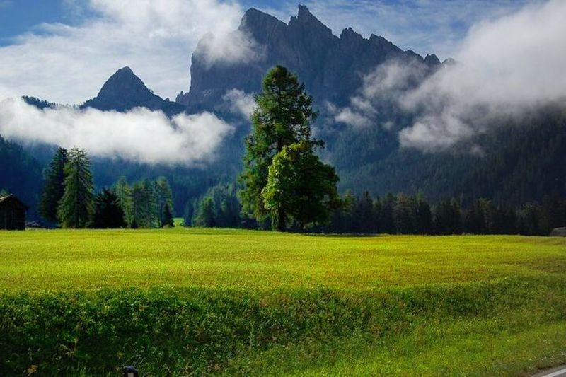 Beauty In Nature Plant Scenics - Nature Tranquil Scene Tree Environment Landscape Tranquility Mountain Sky Land Non-urban Scene Nature Growth Field Green Color Cloud - Sky Grass Idyllic No People