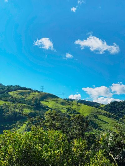 Mountain Plant Sky Growth Scenics - Nature Beauty In Nature Cloud - Sky Tree Nature Land Tranquility No People Landscape Green Color Day Tranquil Scene Environment Field Blue Outdoors Idyllic