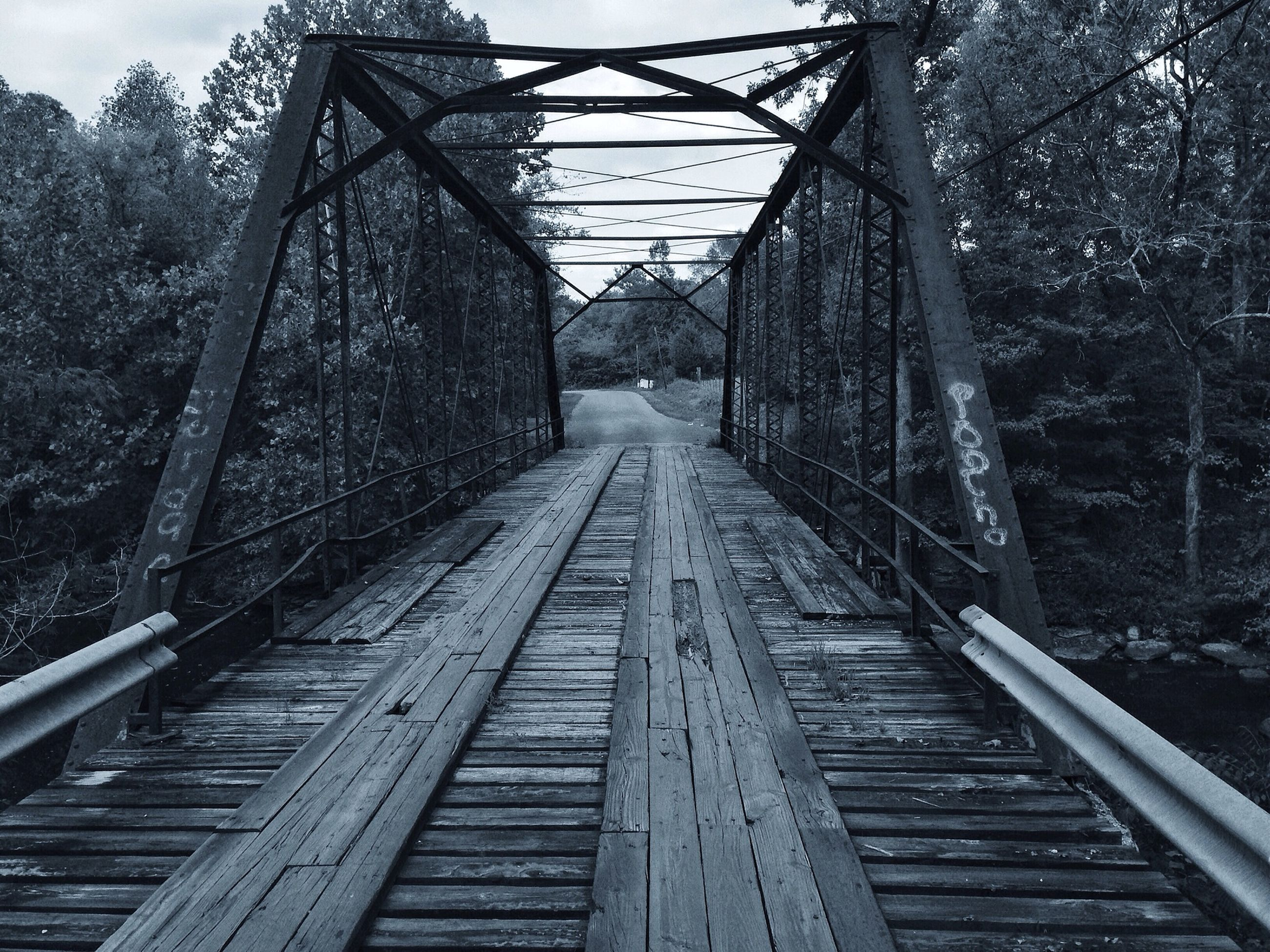 the way forward, tree, connection, diminishing perspective, railroad track, vanishing point, transportation, built structure, bridge - man made structure, metal, rail transportation, architecture, footbridge, sky, railing, forest, long, day, no people, outdoors