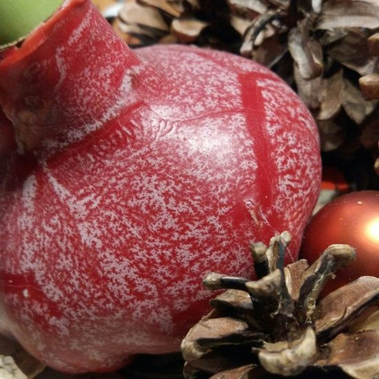 Tannenzapfen Wachs Rot Red Weihnachtsdeko