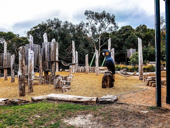 Park Reserve Melbourne
