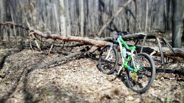 MTB, Trail Riding, forest MTB Nature Trail Ride Forest