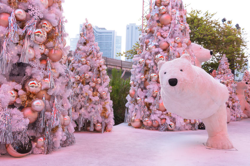 Celebration Event Happiness New Year Polar Bear Thailand White Christmas Animal Themes Celebration Christmas Christmas Decoration Close-up Cute Decoration Festival Mall Outdoor Outdoors Tree White