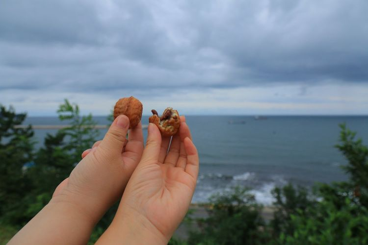 Cropped hands of children holding walnuts at beach against cloudy sky