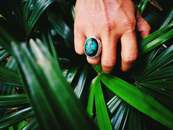 Green Color Close-up Leaf Plant Outdoors Day Nature Human Hand Exotic Ring Akik Gem Gemstones Nature Green Color Stone EyeEmNewHere