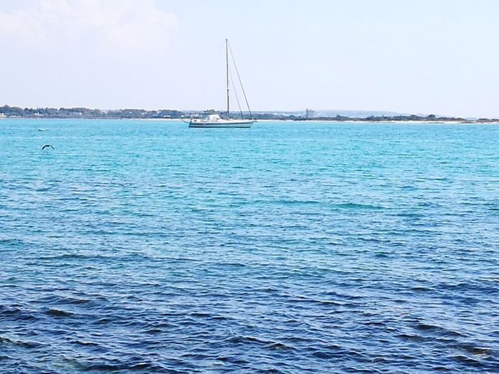Sea Tranquility Idyllic Tourism Tranquil Scene Outdoors Day No People Nautical Vessel Travel Destinations Blue Sky Salento Puglia Lecce Bird Porto Cesareo Clear Sky My Country