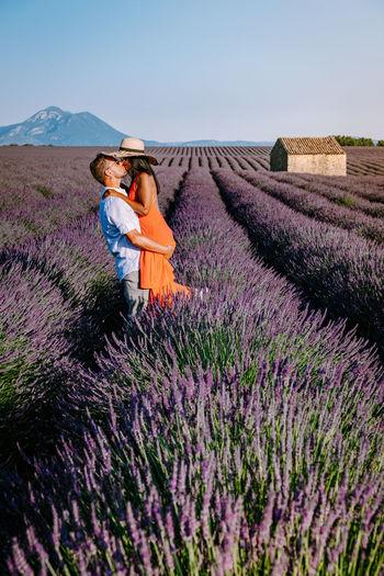 View of purple flowering plants on field