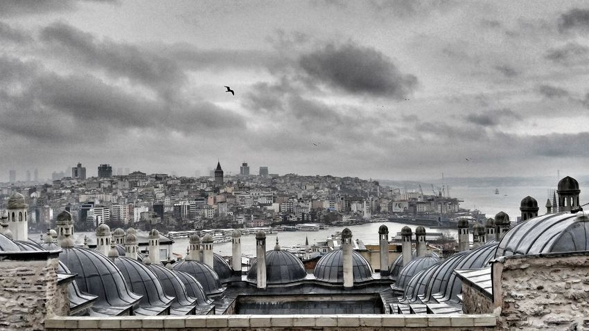 City Architecture Bird Built Structure Sky Urban Skyline Blackandwhite Street Photography Light And Shadow Urban Geometry From My Point Of View Black And White Istanbul Turkey Memories