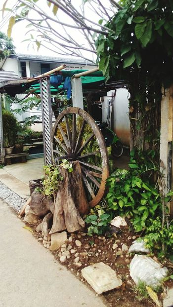 Garden Corner Cart Wheel Old-fashioned No People Wheel Wagon Wheel Built Structure Day Outdoors Watermill House Building Exterior Leaf Growth Architecture Tree Nature
