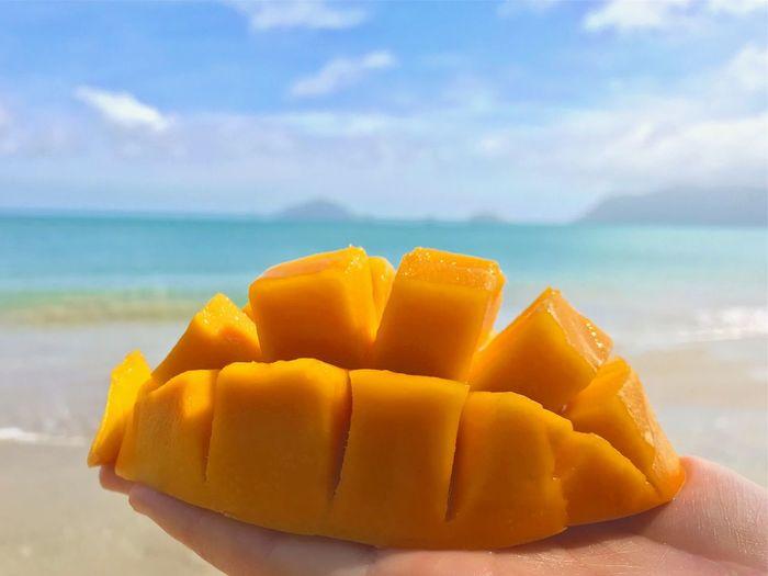 Cropped hand holding mango against beach