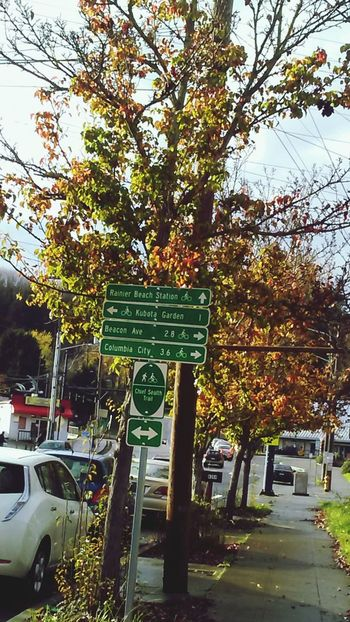 Text Tree Communication Transportation No People City Land Vehicle Road Sign Outdoors Day Sky