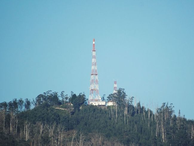 Communication towers. Radio Tower Towers Telecommunication Tower Communication Communications Tower Tree Tower Copy Space Clear Sky Low Angle View Blue Architecture Telecommunications Equipment Day No People Built Structure Outdoors Mountain Technology Nature Sky