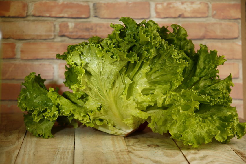 alface lettuce Alface Crespa Alface Dieting Chopped Nature Organic Leaf Vegetable Green Table Raw Food Leaf Still Life Plant Part No People Close-up Lettuce Indoors  Freshness Green Color Vegetable Wellbeing Food And Drink Food Healthy Eating Indoors  Vegetarian Food