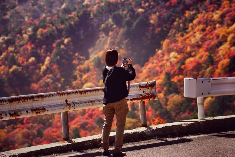 Full length rear view of woman photographing during autumn
