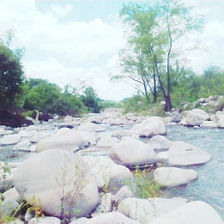 River Hollydays Stones & Water Trees And Nature