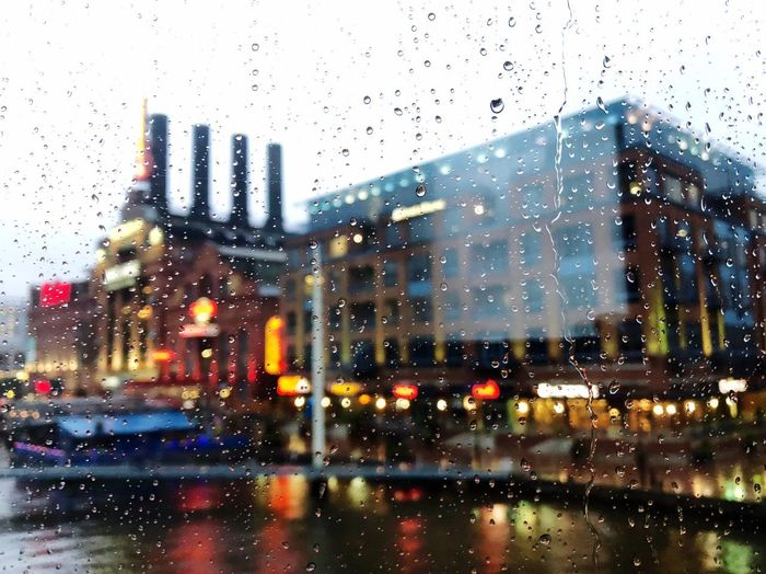 Raindrops on
