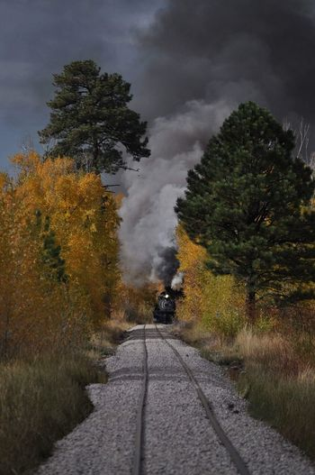 Railroad Railroadphotography Trains Trains_worldwide Trains, Antique Trainns, History Smoke - Physical Structure Smoke Autumn Colors Autumn Tree The Way Forward Nature Cloud - Sky Outdoors Day No People Landscape Beauty In Nature Scenics Sky
