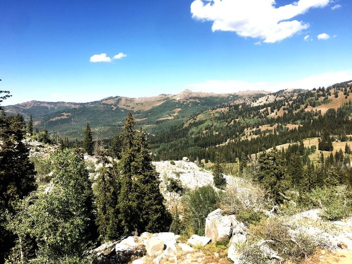 Overlook on the way to Cecret lake in Alta Utah
