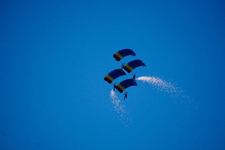 Blue wings team