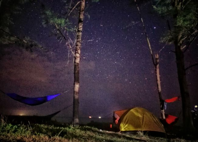 night capture.. Nightphotography Nightcapture Indonesia_photography Landscape_photography Nature Photography Landscape WeLoveBalikpapan Astronomy Galaxy Space Milky Way Star - Space Tent Tree Constellation Camping Starry Star Star Field Space And Astronomy Nebula Aurora Polaris Globular Star Cluster Space Exploration Astrology Planetary Moon Infinity