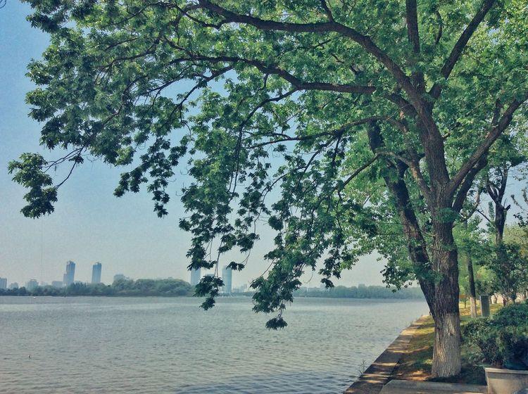 Xuanwu lake Colorful Hello World Lake View Park Landscape City China Nanjing Enjoying Life