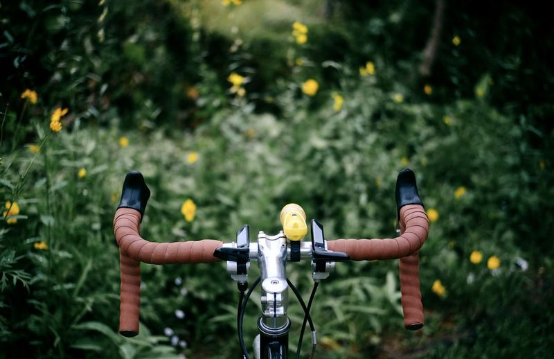 Man riding bicycle on plants