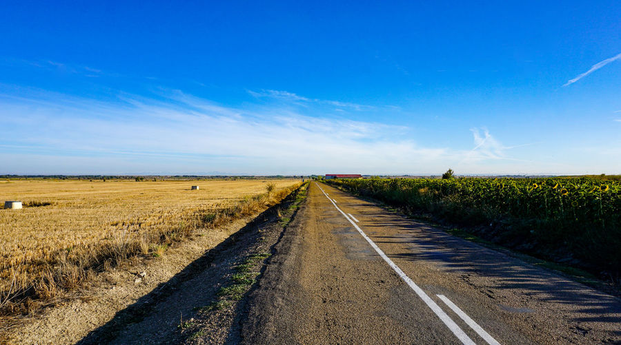 Empty road amidst field against blue sky